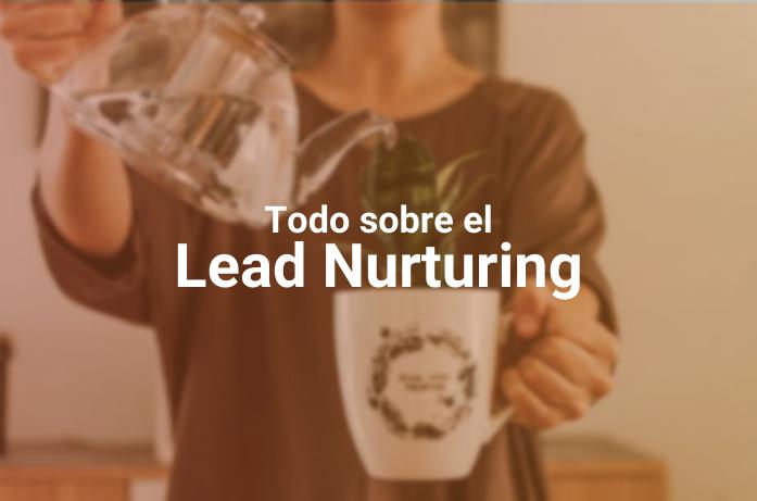 Lead Nurturing: ¿Qué Es, Para Qué Sirve y Cómo Podés Implementarlo?